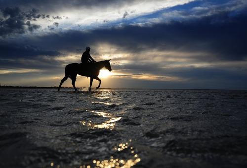 اسب سواری در ساحل آلتونا در شهر ملبورن استرالیا