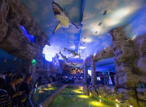 مراسم افتتاح شهر اقیانوسی در مسکو