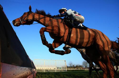 مسابقات اسب سواری در بریتانیا