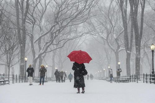 پارک مرکزی شهر نیویورک