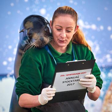 سرشماری سالانه حیوانات باغ وحش لندن