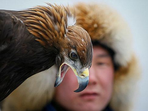 جشنواره سالانه شکار در قزاقستان