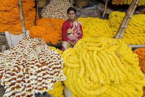 بازار گل در کلکته هند