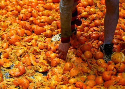 جشنواره سالانه جنگ پرتقال در جنوب ایتالیا