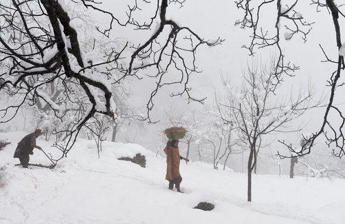 بارش برف در سرینگر کشمیر