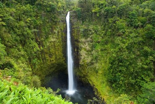 آبشار آکاکا در هاوایی