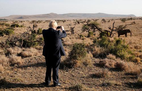 بوریس جانسون وزیر امور خارجه بریتانیا در حال گرفتن عکس با تلفن همراهش از فیل های موجود در منطقه محافظت شده حیات وحش در دست لایکیپیا در شمال کنیا