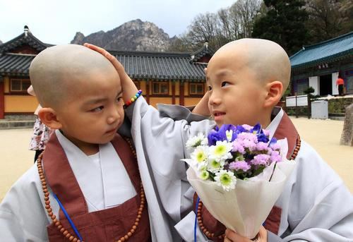 دو راهب کودک پس از تراشیدن موی سر در معبدی در کره جنوبی