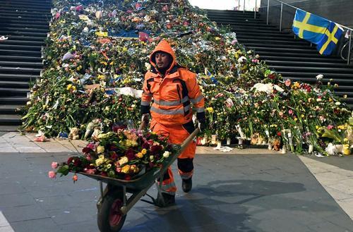 جمع آوری گل های خشکیده از محل حمله تروریستی دو هفته پیش در شهر استکهلم سوئد