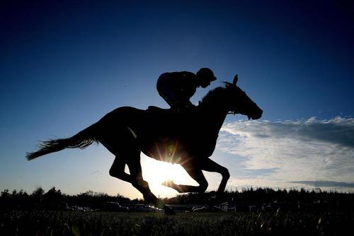 مسابقات اسب سواری در اکستر بریتانیا