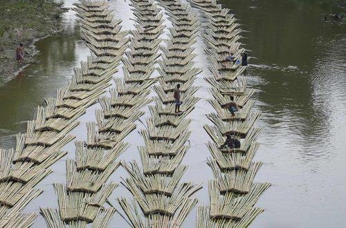 انتقال چوب های بامبو با استفاده از رودخانه – هند