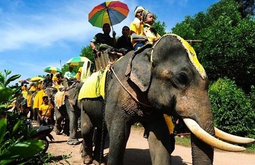فیل سواری در جشنواره ای در یکی از ایالت های جنوبی تایلند