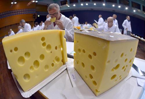 نمایشگاه پنیرهای مختلف تولیدی اروپا – آلمان