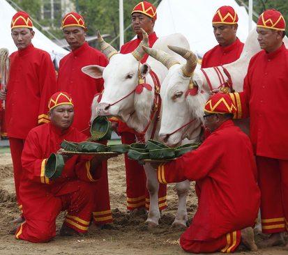 مراسم مخصوص فصل کاشت برنج در تایلند