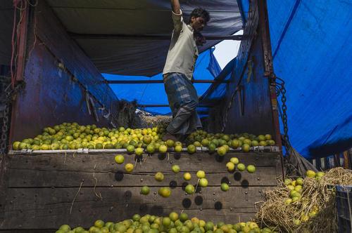 بازار میوه و تره بار شهر کلکته هند