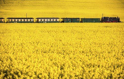 مسیر زیبای راه آهن – آلمان