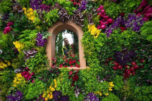 نمایشگاه گل و گیاه – لندن