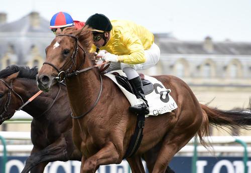 مسابقات اسب سواری – فرانسه