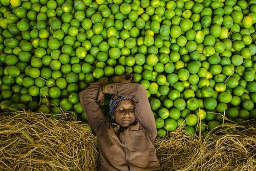 خواب ظهرگاهی در بازار میوه در حیدرآباد هند