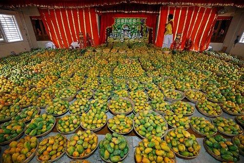 جشنواره انبه در معبدی در احمد آباد هند