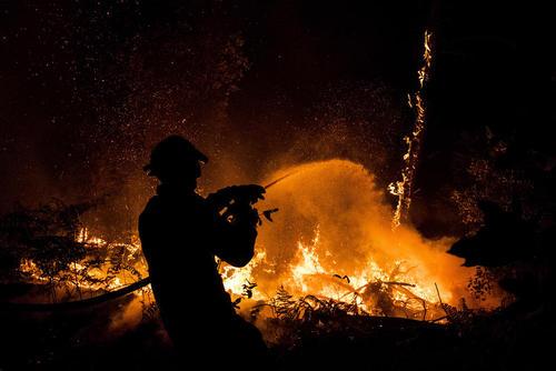 تلاش آتش نشانان برای فرونشاندن شعله های آتش سوزی در جنگل – پرتغال
