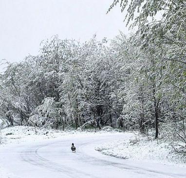 بارش برف تابستانی در شهر مورمانسک در سیبری روسیه