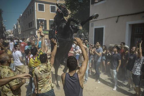 جشنواره اسب رانی