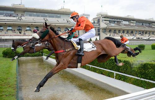 مسابقات جایزه بزرگ اسب سواری جام آل کاپون در پاریس