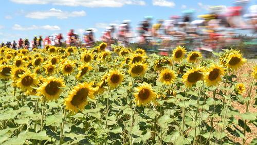 مسابقات بین المللی دوچرخه سواری