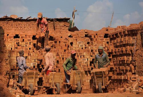 کارگران مهاجر مشغول کار در یک کارگاه آجرسازی در کشمیر