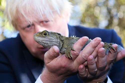 وزیر امور خارجه بریتانیا در منطقه ای حفاظت شده حیات وحش در نیوزیلند