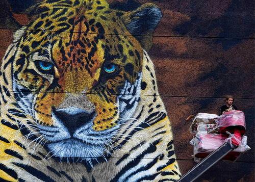 نقاشی دیواری در ولادی وستک روسیه