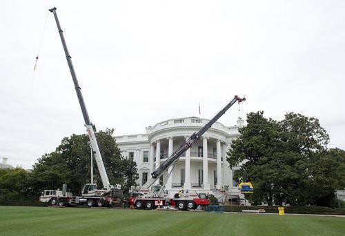 جرثقیل های ساختمانی مشغول کار در چمن جنوبی کاخ سفید در غیاب دونالد ترامپ و در حالی که او برای یک تعطیلات طولانی تابستانی به نیوجرسی رفته است