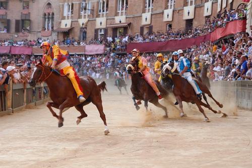 مسابقات اسب سواری در سیئنا ایتالیا