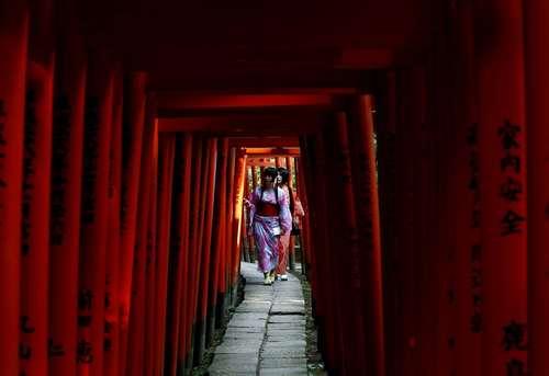 بازدید از معبد نِزو در توکیو
