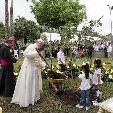 کاشت نهال درخت در جریان سفر پاپ فرانسیس به کشور کلمبیا