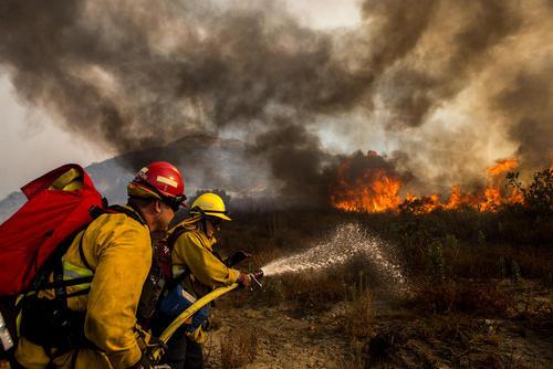 آتش سوزی جنگلی در منطقه