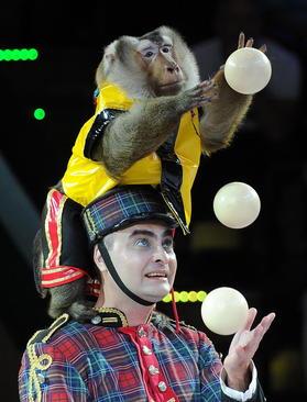 نخستین جشنواره جهانی هنرهای سیرکی در شهر مینسک بلاروس