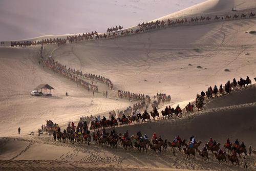 بازدید گردشگران از صحاری شمال غرب چین در یک جشنواره سالانه پاییزی