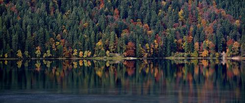 طبیعت پاییزی دریاچه ای در باواریا آلمان