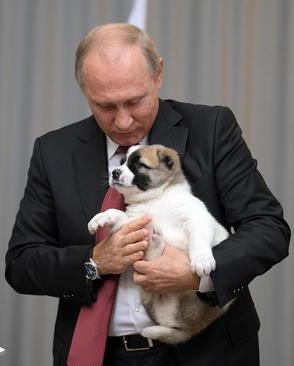 هدیه تولدی که رییس جمهور روسیه از همتای ترکمنستانی خود دریافت کرد/ شهر بندری سوچی روسیه