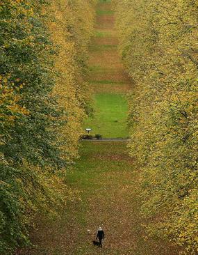 پارکی در شهر بلفاست – ایرلند شمالی