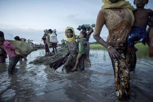 ورود پناهجویان مسلمان میانماری به بنگلادش