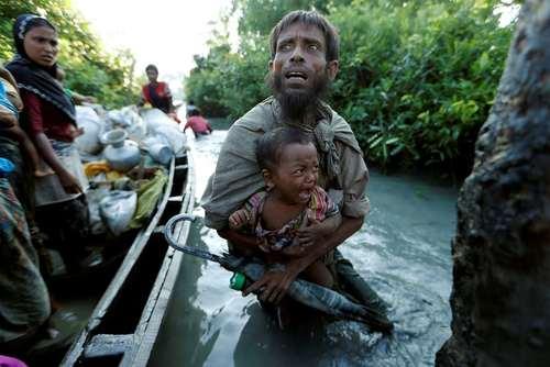 پناهجویان مسلمان میانماری در حال ورود به بنگلادش