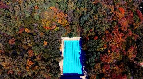 یک استخر داخل جنگلی در شنیانگ چین