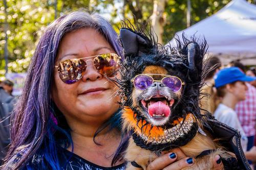 مهمانی سالانه هالوین برای سگ ها در نیویورک