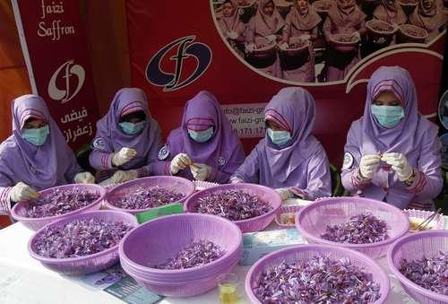 جشنواره سالانه زعفران در هرات افغانستان