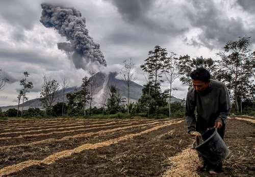 کشاورزی در کنار کوه آتشفشانی – سوماترا اندونزی