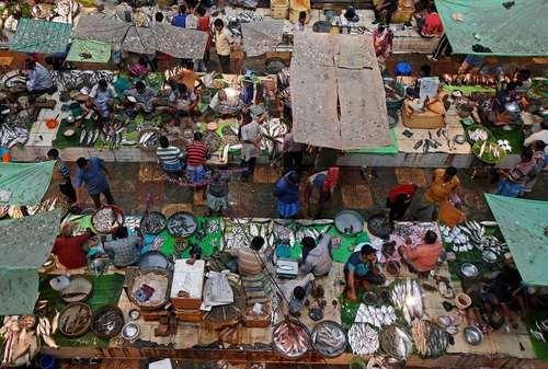 بازار ماهی فروشان در کلکته هند