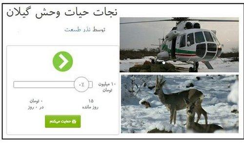 علوفه رسانی برای گوزن های استان گیلان در برف شدید زمستان 95